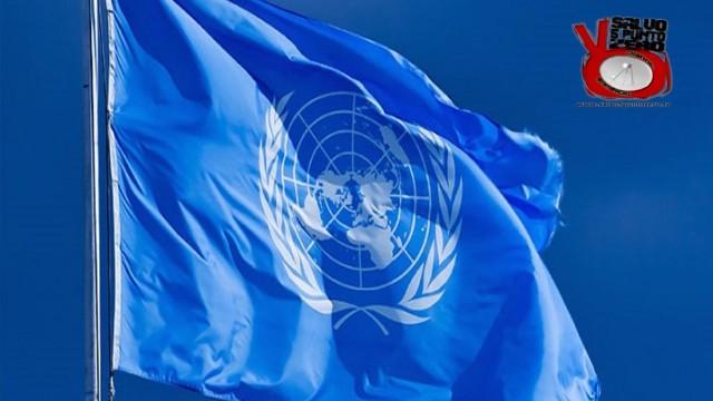 L'ONU getta la maschera! Miscappaladiretta 27/11/2015.
