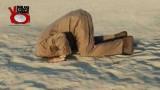 Nascondersi da struzzi o sparire dalla loro vista? Tg moneta 24//11/2015