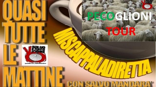 Aggiornamenti sul Pecoglioni TOUR. Miscappaladiretta. 04/02/2016