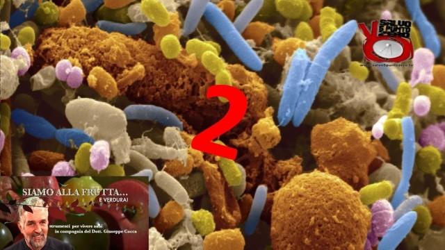 Il microbiota ci dice cosa mangiare! Seconda parte. Siamo alla frutta…e verdura con il Dott. Giuseppe Cocca. 12a Puntata. 17/01/2017