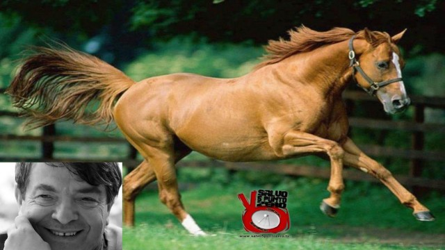 Silvano Agosti: fumerò quando vedrò un cavallo fumare! Alla conquista di se stessi. 67a Puntata. 30/03/2017