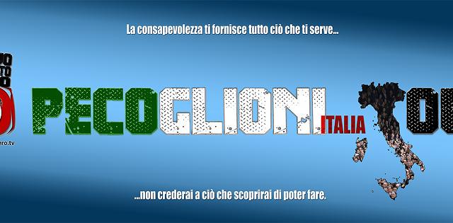 Trailer Pecoglioni Italia Tour