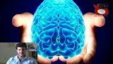 Paradossi quantistici: il cervello non esiste! Filosofeggiando. Con Angelo Santini. 12a Puntata. 05/06/2017